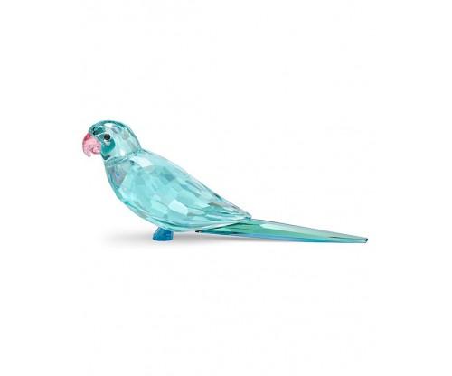 SWAROVSKI Jungle Beats Blue Parakeet Paco